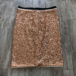 Sequin Skirt ✨